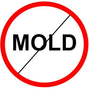 Mold removal dangers after disasters.